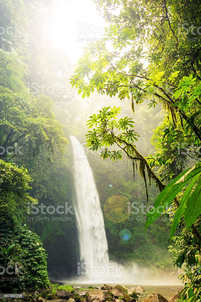 Tropical waterfall & flowing river stock photo