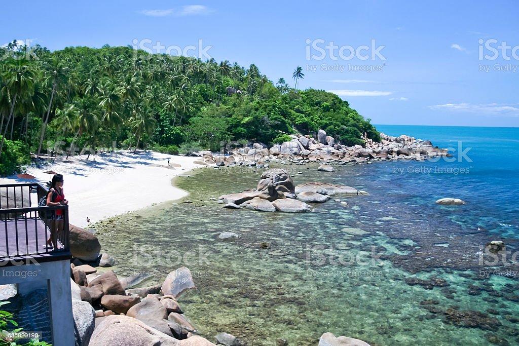 tropical white sand beach lamai ko samui thailand stock photo