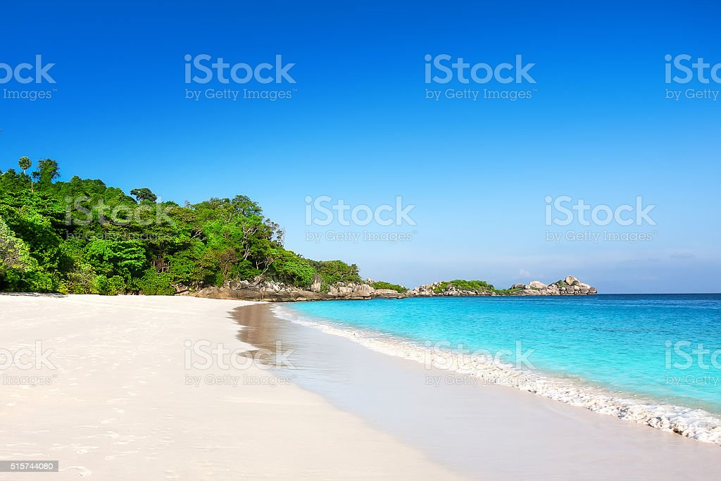 Tropical white sand beach with palm trees stock photo