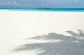 Tropical white sandy beach with palm leaves shadow