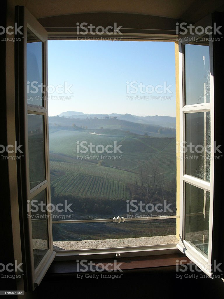 trought the window stock photo