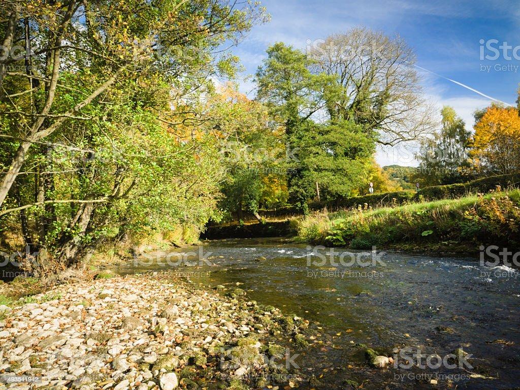 Trout fishing Stream stock photo