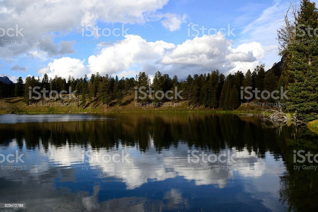 Trout lake in Yellowstone national park stock photo
