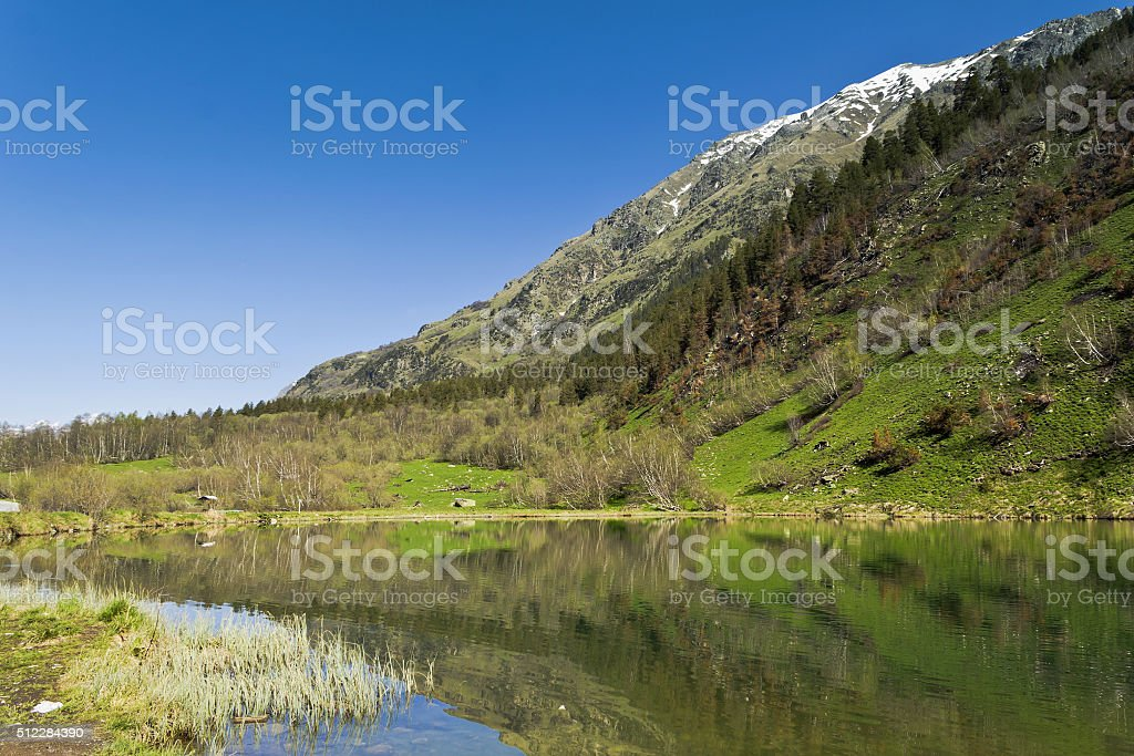 Trout lake is located in gorge Gonachhir in the Caucasus. stock photo
