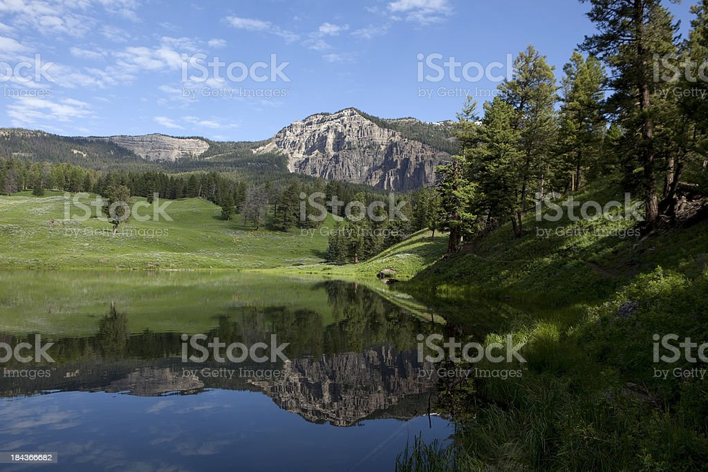 Trout Lake Mountain Reflections in Yellowstone National Park stock photo