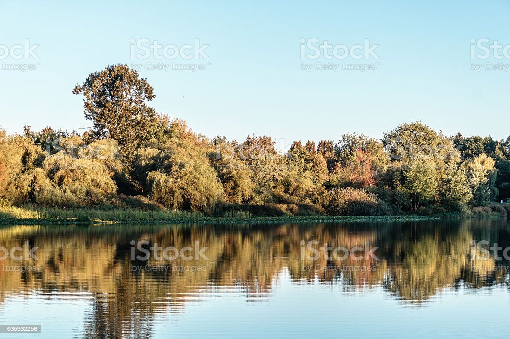 Trout Lake Park in Vancouver, Canada stock photo