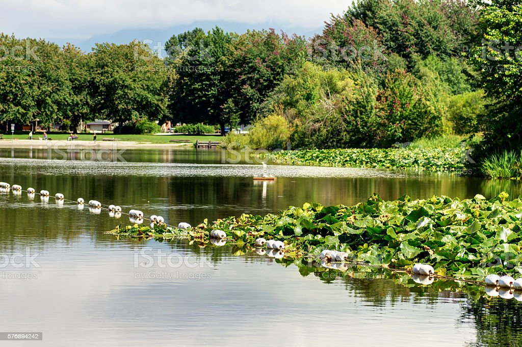 Trout Lake, Vancouver, Canada stock photo