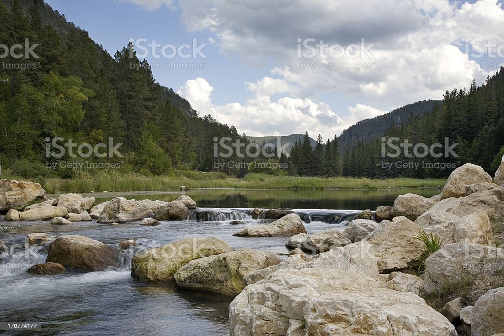 Trout stream in the Black Hills stock photo