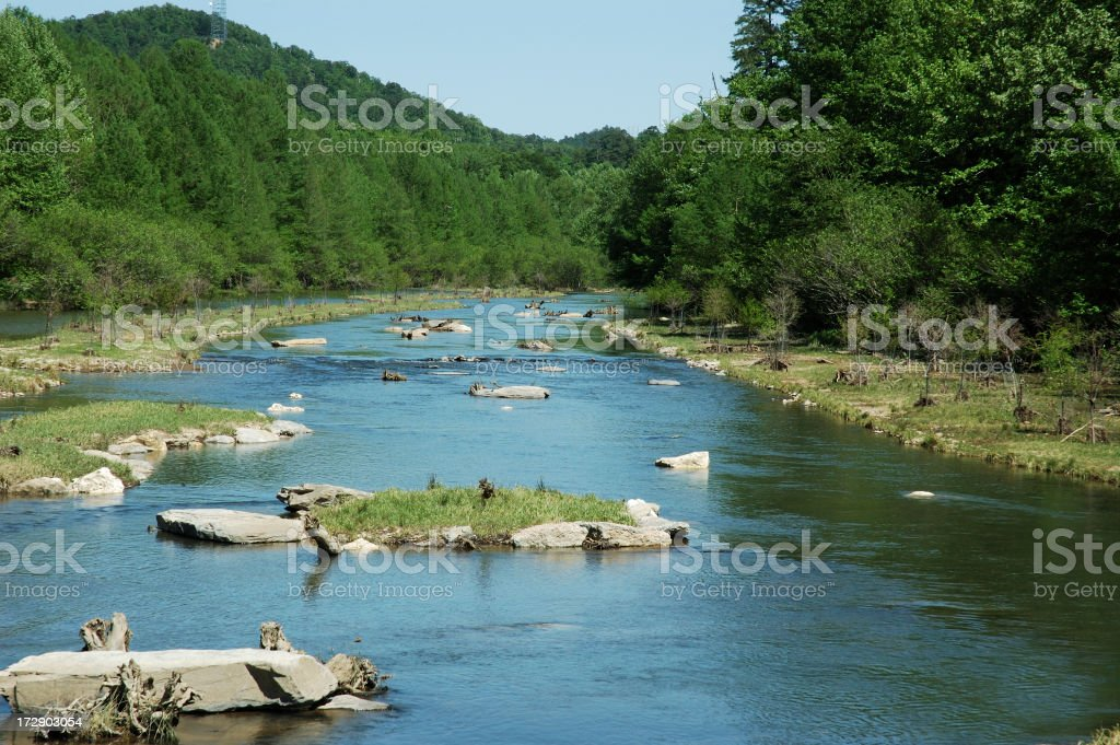 Trout Stream royalty-free stock photo