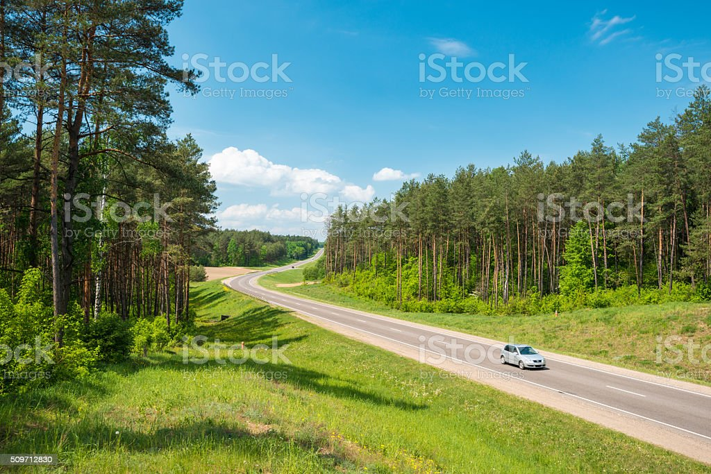 Truck and cars on road in forest. Belarus. stock photo