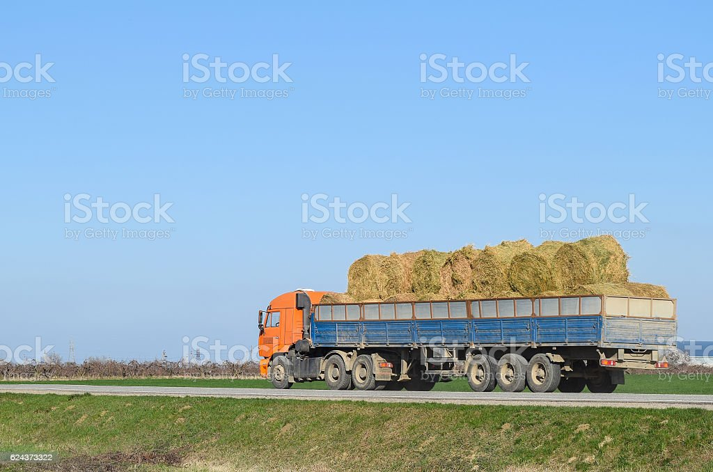 Truck carrying hay in his body stock photo