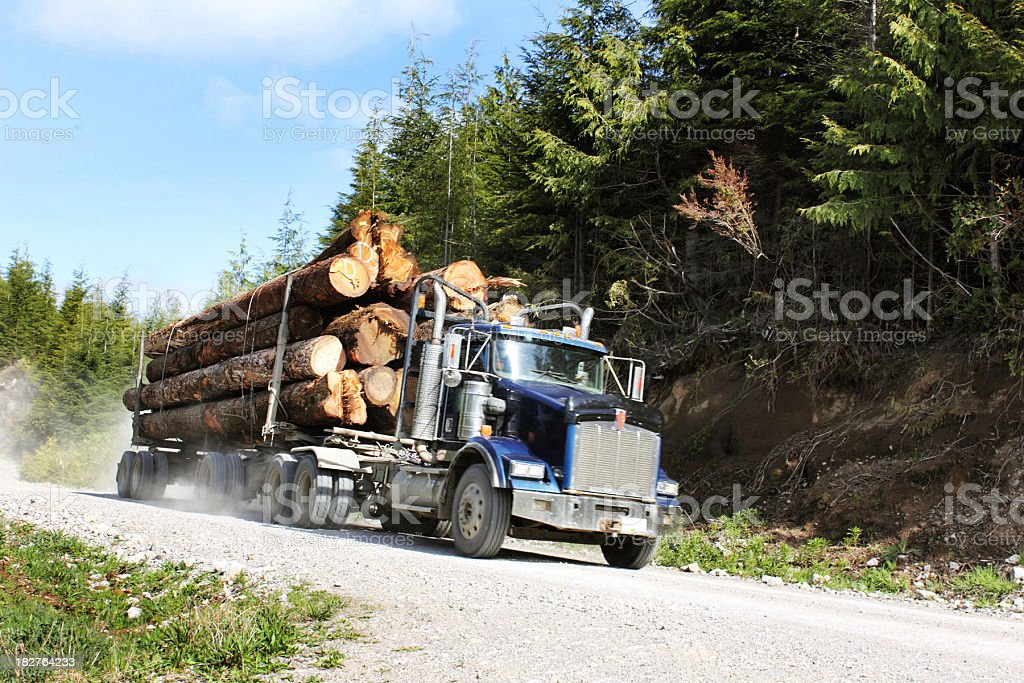 Truck filled with logs going through a dirt road stock photo