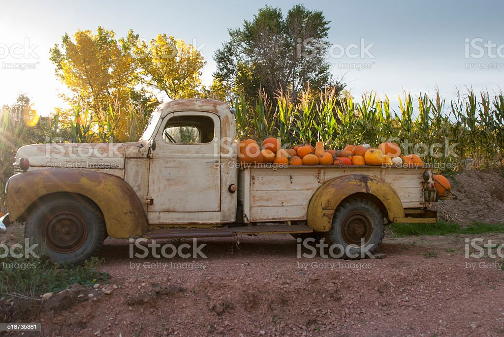 Truck full of pumpkins stock photo