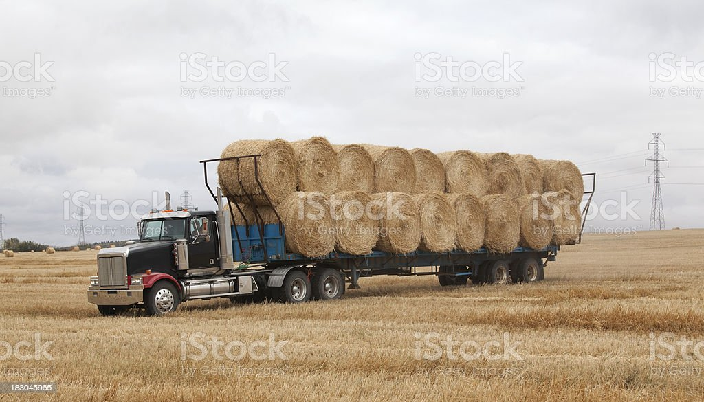 Truck Hauling Straw Bales In Field royalty-free stock photo