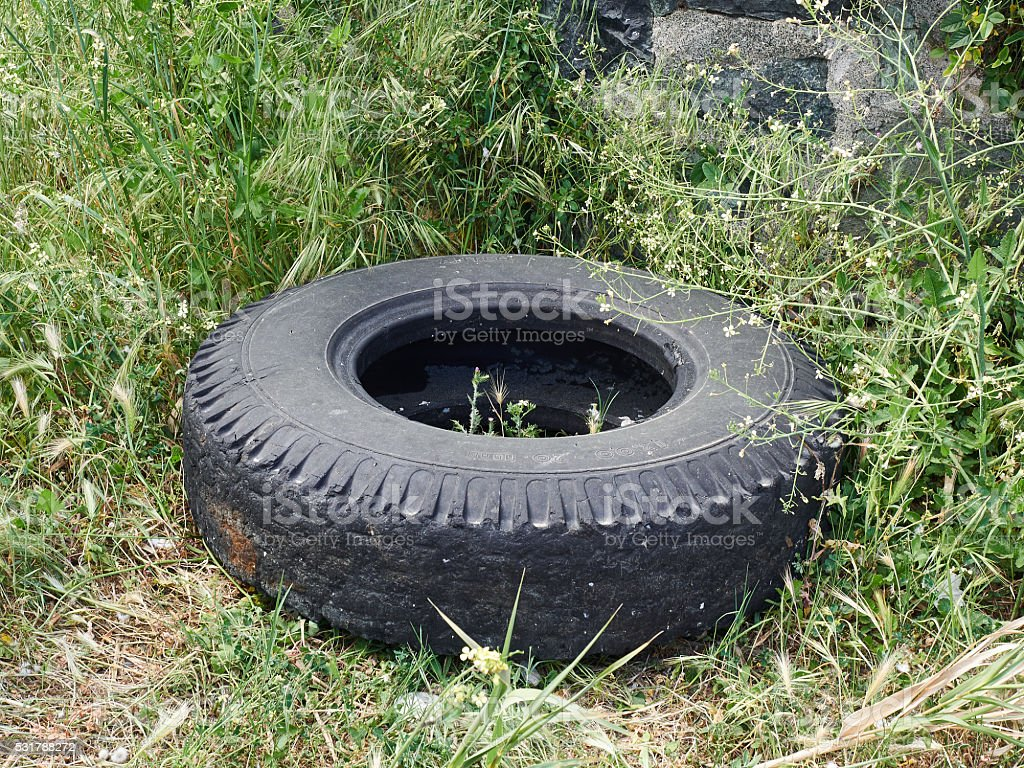 Truck tyre abandoned in the grass. Symbol of pollution stock photo