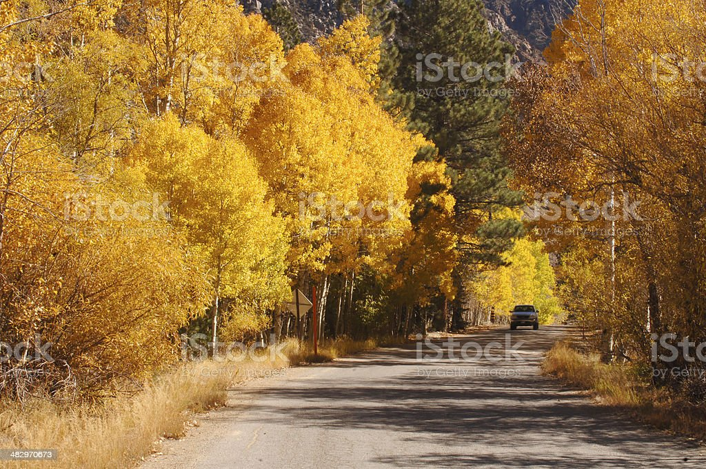 Trucking Through Aspen Country stock photo