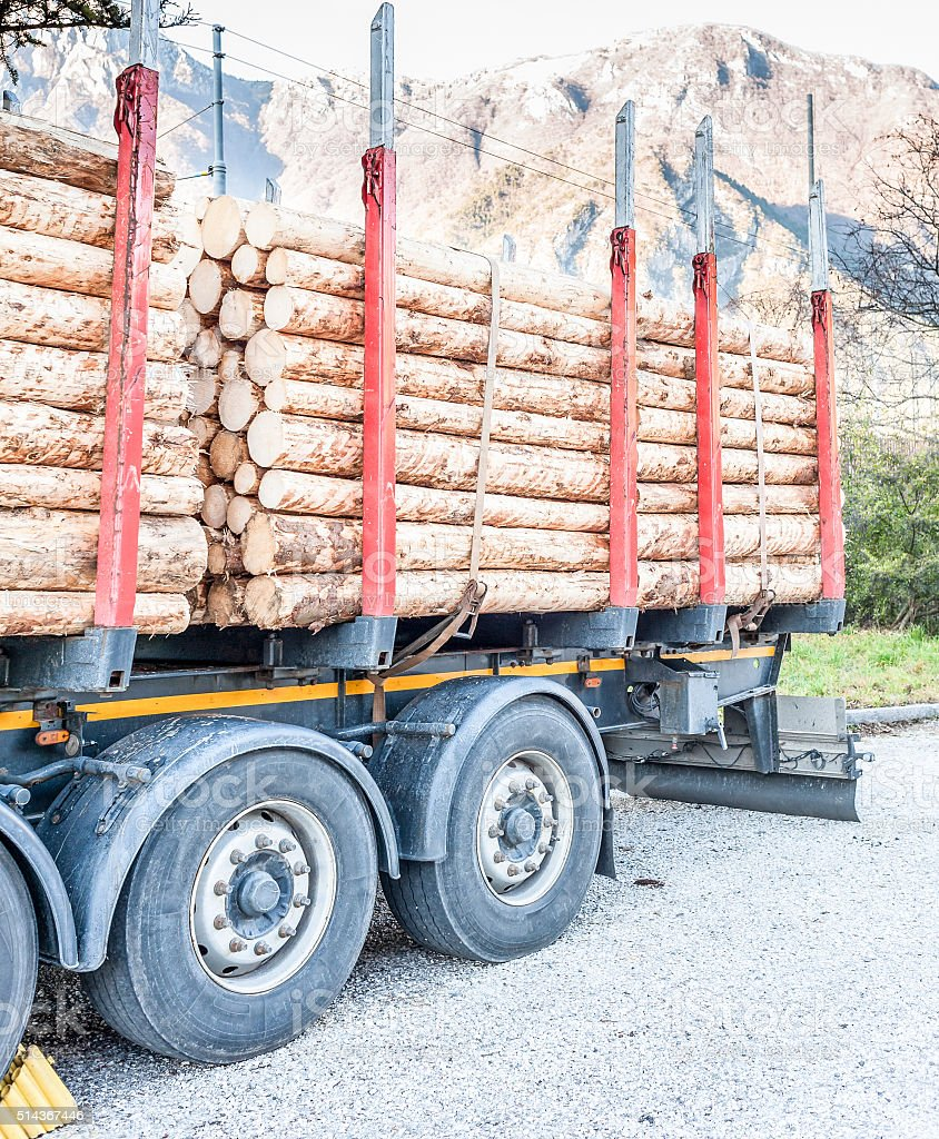 Trucks charged with wood logs waiting for delivery stock photo