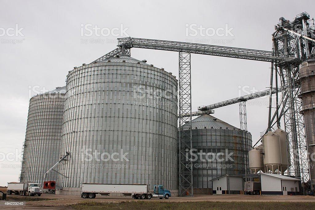 Trucks Haul Grain to Iowa Elevator stock photo