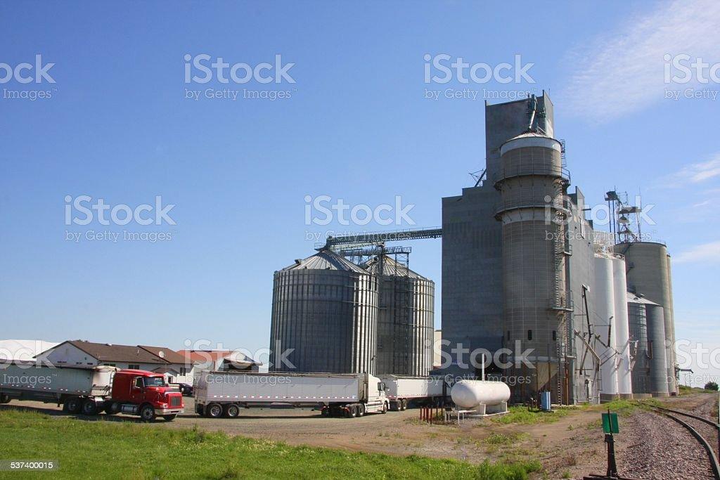 Trucks Haul to the Local Grain Elevator stock photo