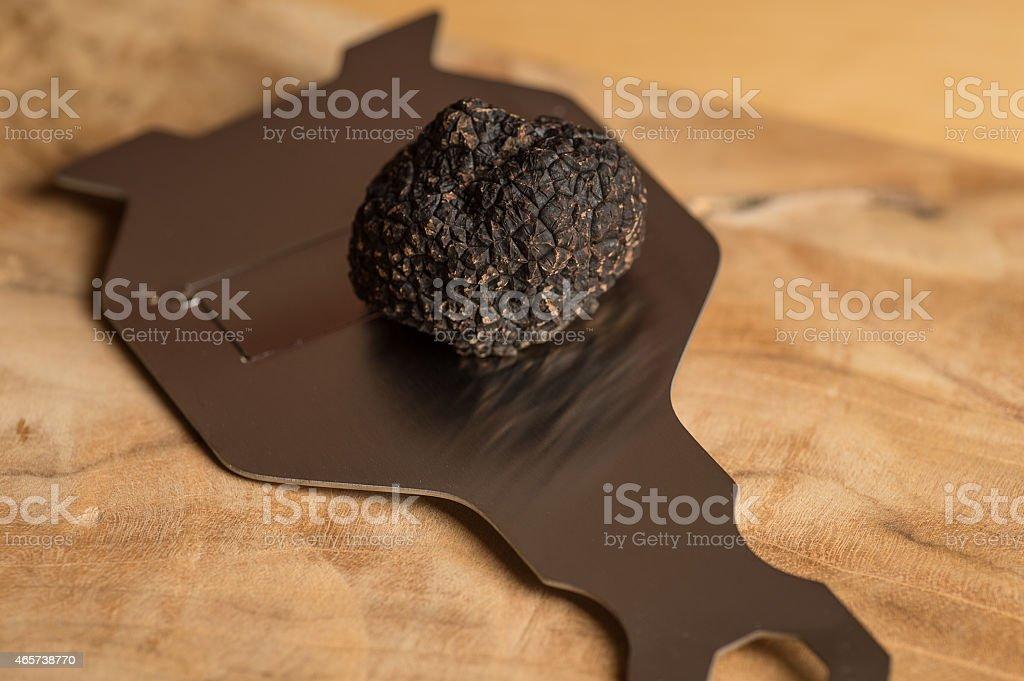 Truffel on tool. stock photo