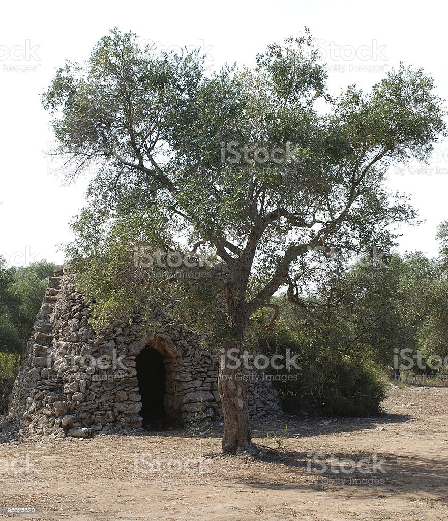 Trullo with Olive Tree royalty-free stock photo
