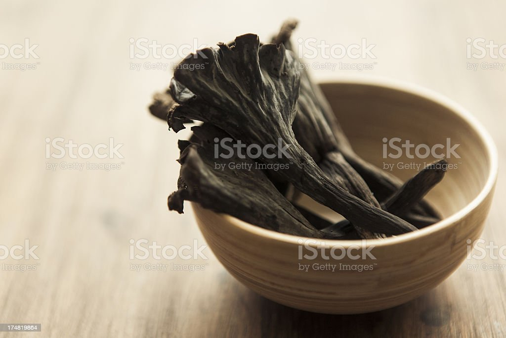 Trumpet Of The Dead royalty-free stock photo