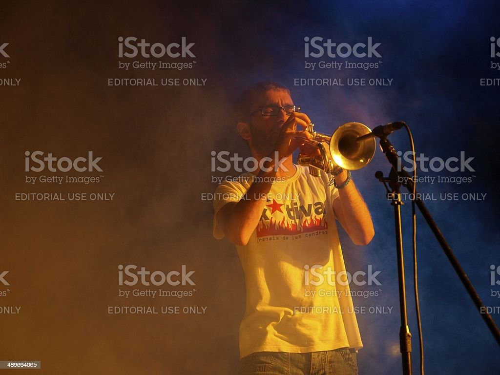Trumpeter in the fog stock photo