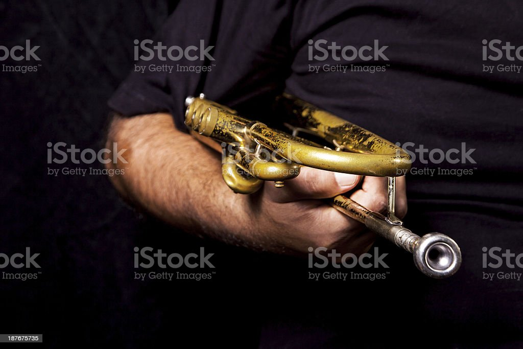 Trumpeter royalty-free stock photo
