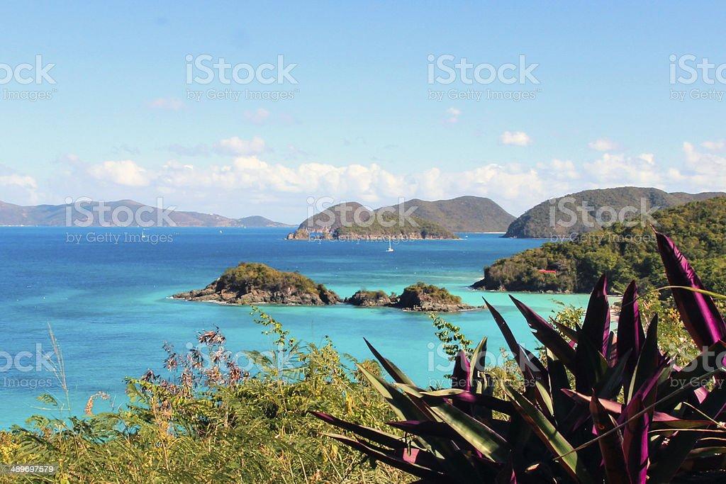 Trunk Bay overlook stock photo