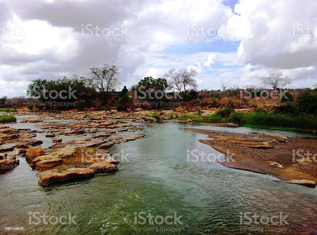Tsavo river stock photo