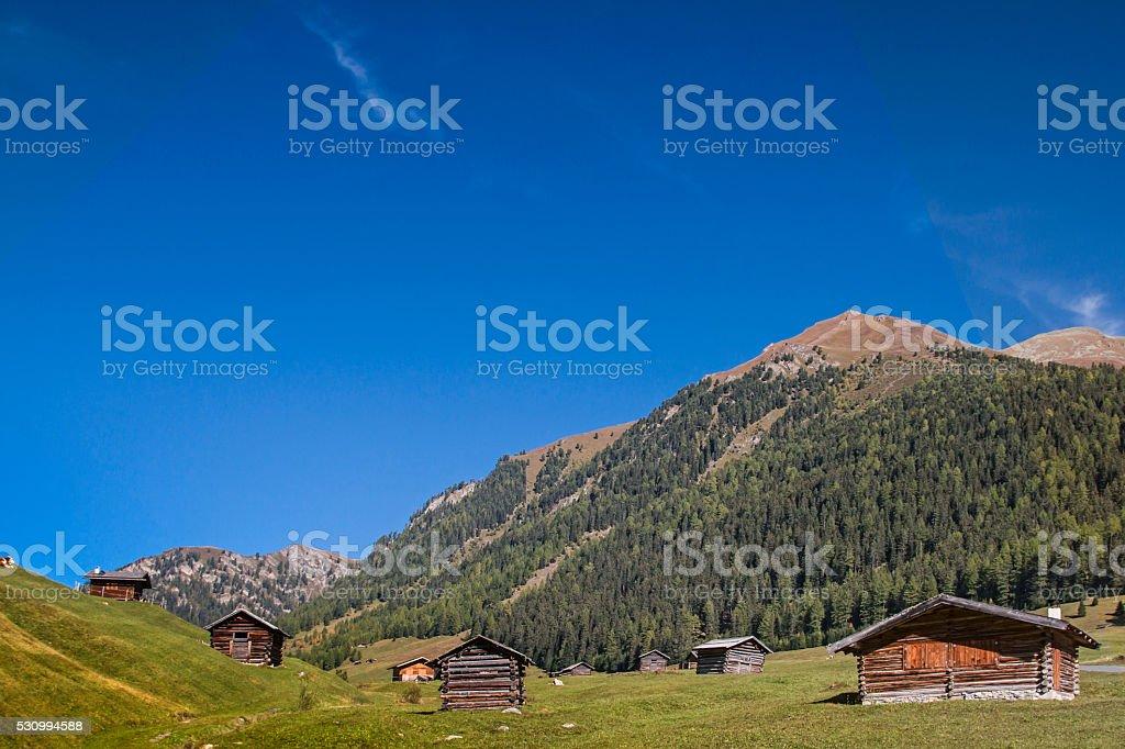 Tschey meadow stock photo