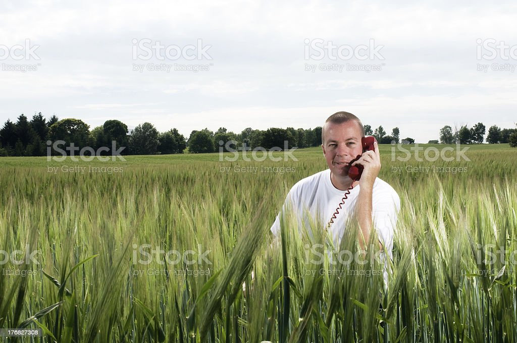 T-Shirt and Jeans Man in Farmfield Series royalty-free stock photo