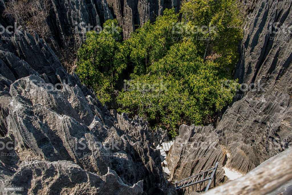 Tsingy Bemaraha National Park stock photo