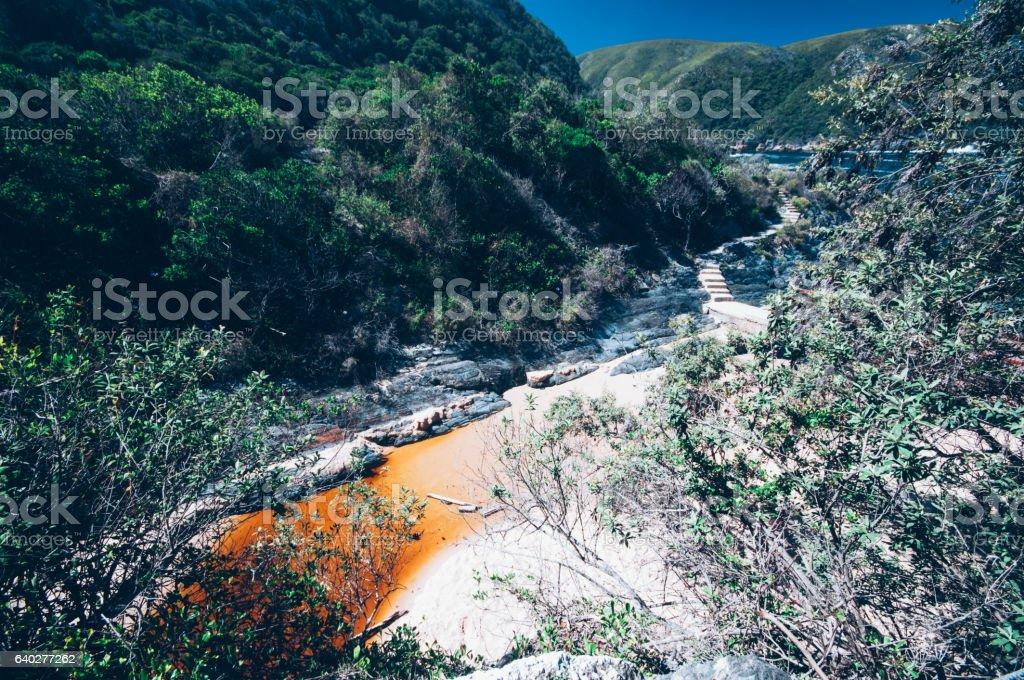 Tsitsikamma National Park stock photo