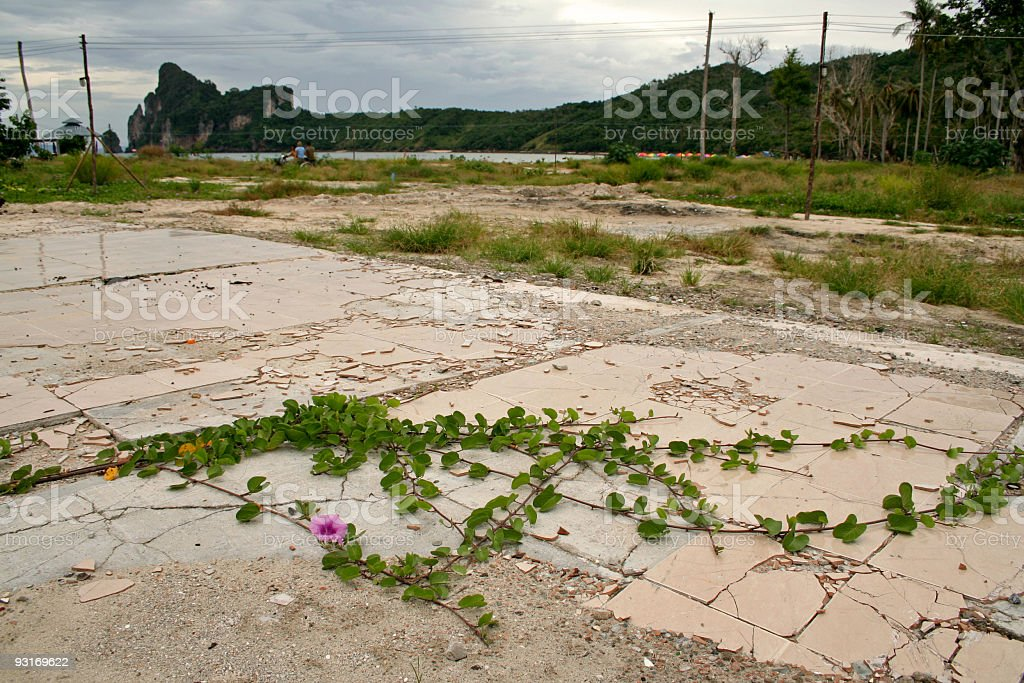 tsunami ground zero koh phi pi thailand royalty-free stock photo