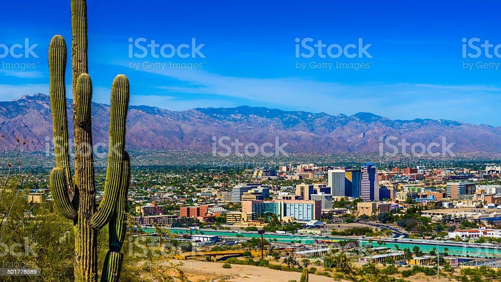 Tucson Arizona skyline cityscape panorama framed by saguaro cactus, mountains stock photo