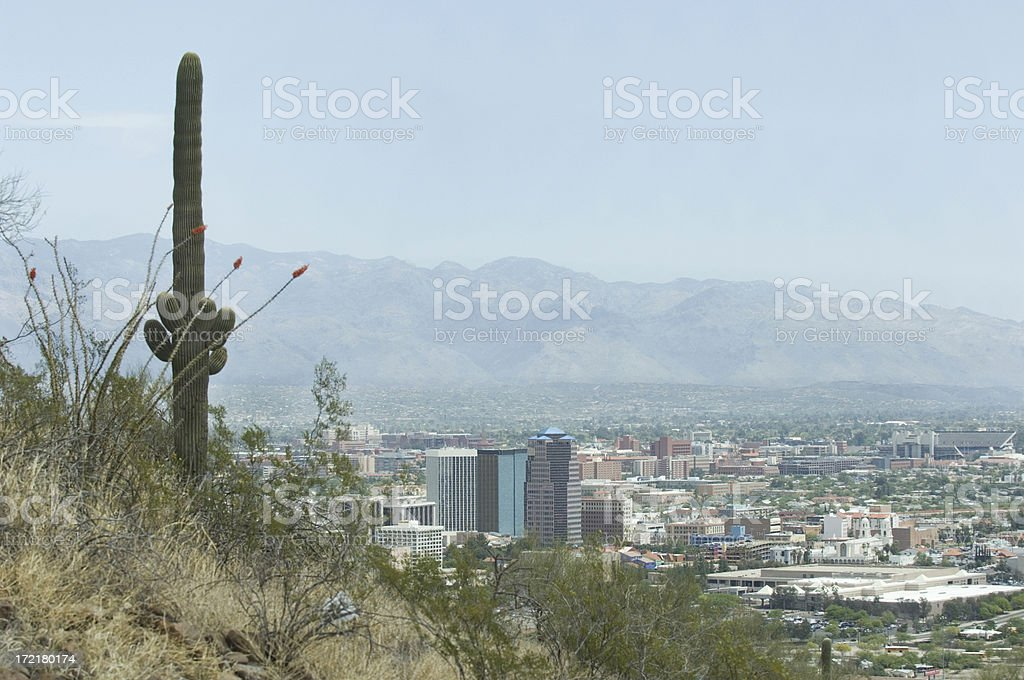 Tucson City with Cactus royalty-free stock photo