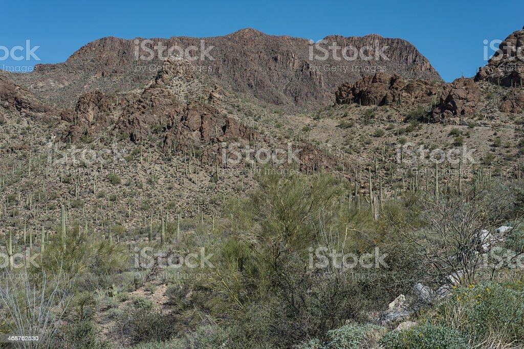 Tucson Mountain Park, Tucson, Arizona stock photo