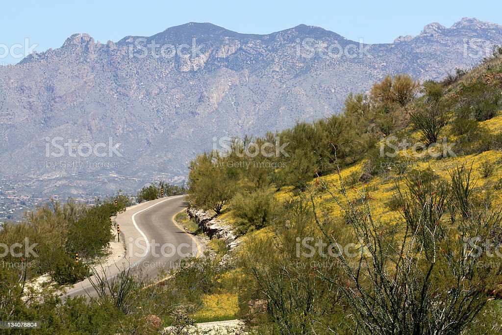 Tucson Mountain View stock photo