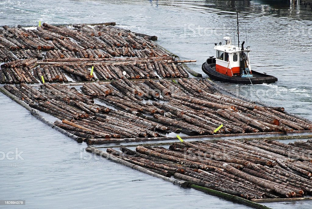 Tugboat hauling log rafts downriver to mill stock photo