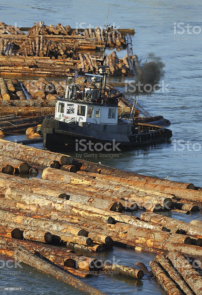 Tugboat Pushing Log Boom stock photo