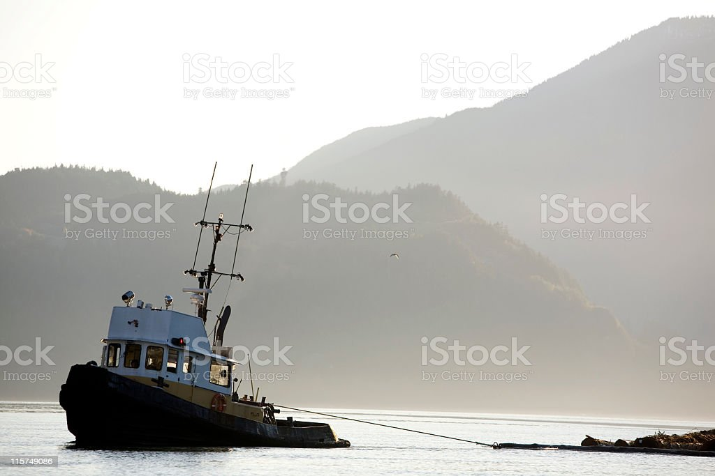 Tugboat towing logs with mountains in the background. stock photo
