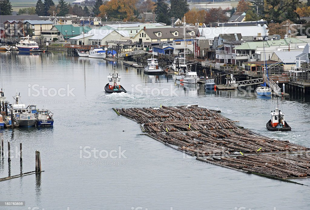Tugboats pulling log raft upriver through town to mill stock photo