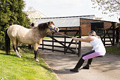 Tug-of-war! young girl fighting losing battle with pony.