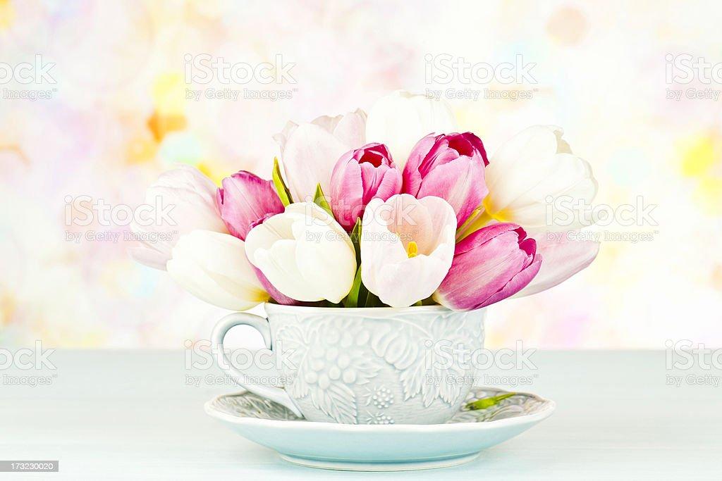 Tulip Bouquet in Teacup stock photo