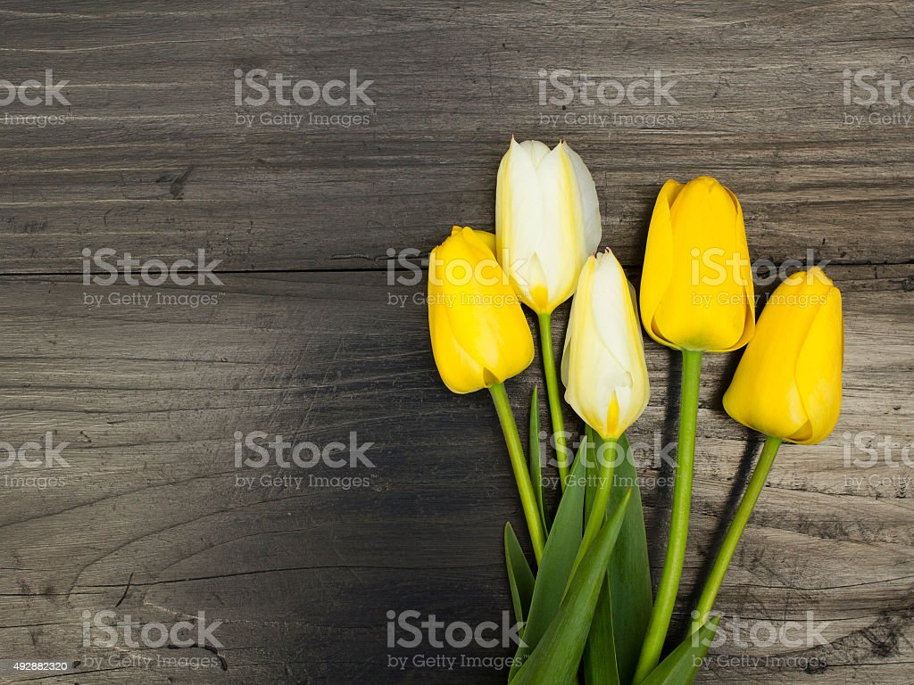 tulip bouquet on dark wooden background stock photo