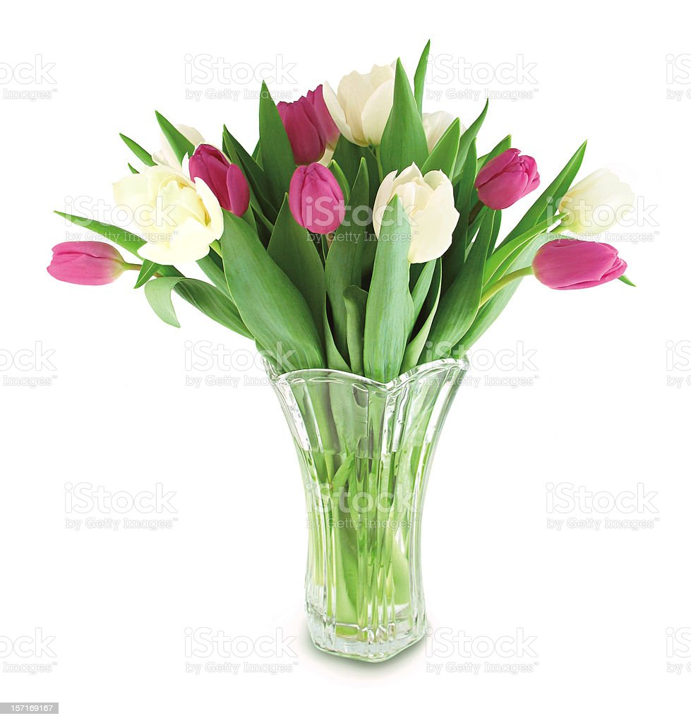 Tulip Bouquet stock photo