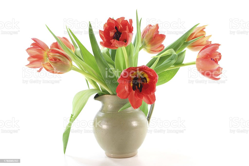 tulip bouquet royalty-free stock photo