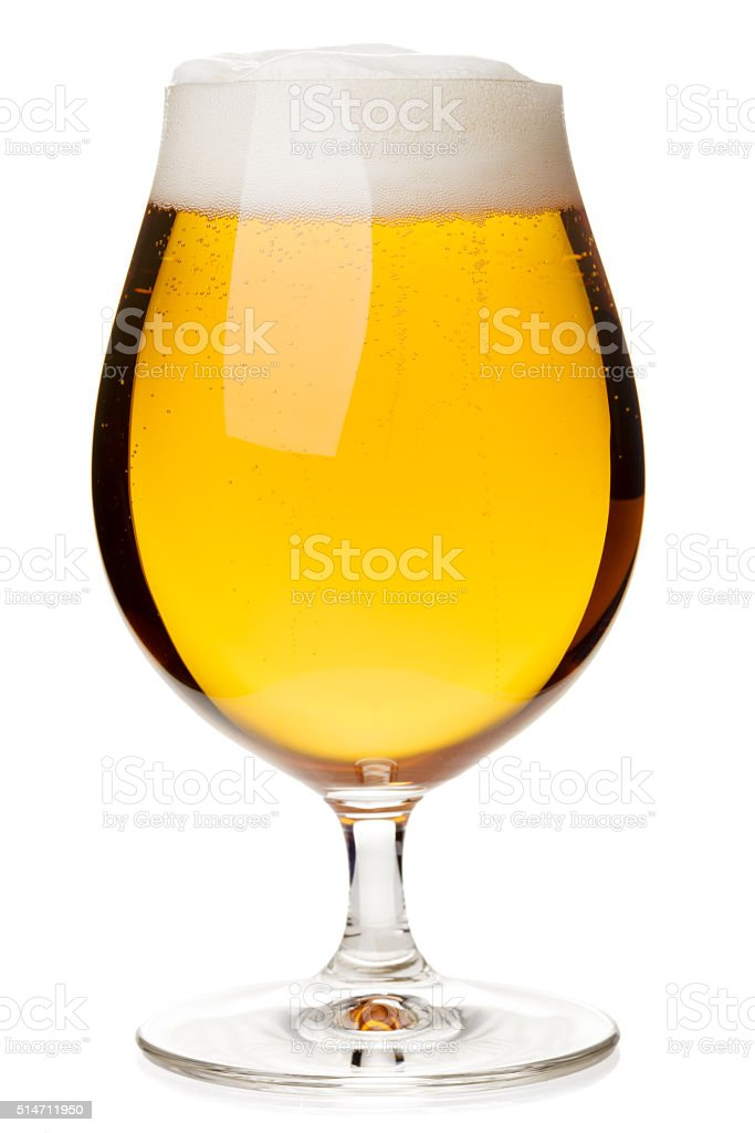 Tulip glass of lager beer isolated stock photo