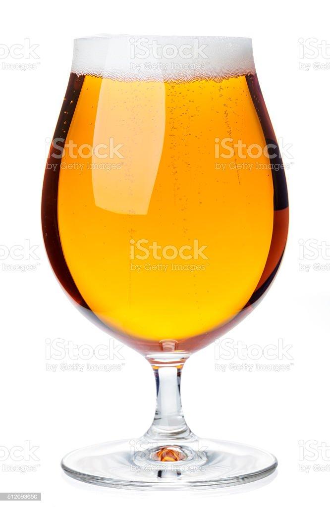 Tulip glass of pilsener beer isolated stock photo